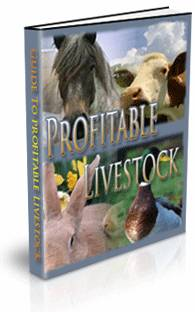 The Guide To Profitable Livestock Ebook